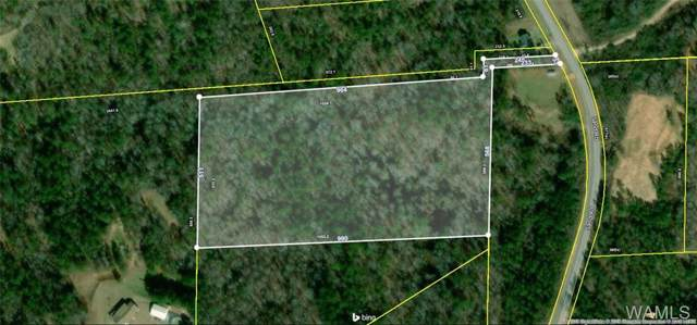 00 Sand Road, FOSTERS, AL 35463 (MLS #136571) :: The Advantage Realty Group