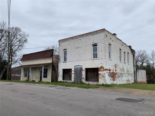 111 E Coats Avenue, LINDEN, AL 36748 (MLS #136603) :: The Advantage Realty Group
