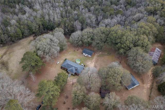 15038 Northside Road, NORTHPORT, AL 35475 (MLS #136844) :: The Gray Group at Keller Williams Realty Tuscaloosa