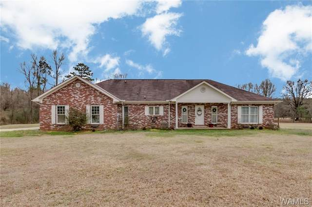 13330 Hwy 11 S, FOSTERS, AL 35463 (MLS #136869) :: The Advantage Realty Group