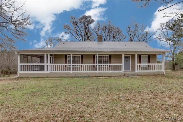 15226 Highway 11 S, FOSTERS, AL 35463 (MLS #136904) :: The Advantage Realty Group