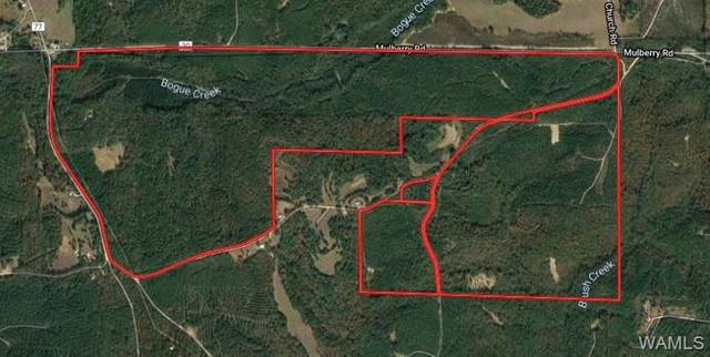 0 Mulberry Road, SULLIGENT, AL 35586 (MLS #137091) :: The K|W Group