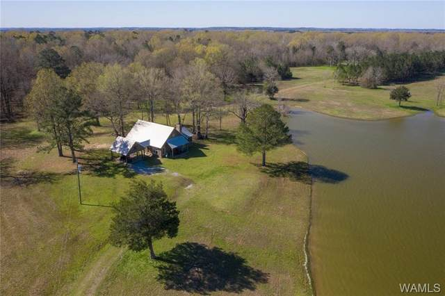 00 Co Rd 24, Gainesville, AL 35464 (MLS #137305) :: The Advantage Realty Group