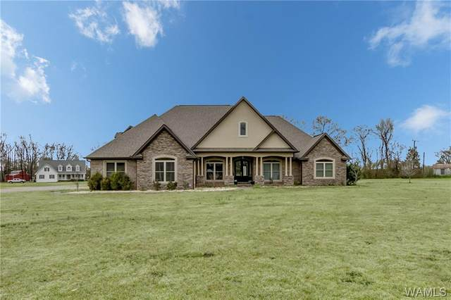 130 County Rd 46, MOUNDVILLE, AL 35474 (MLS #137333) :: The Alice Maxwell Team
