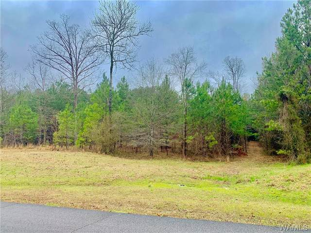 0 Stoney Point Road, Double Springs, AL 35553 (MLS #137351) :: The Advantage Realty Group