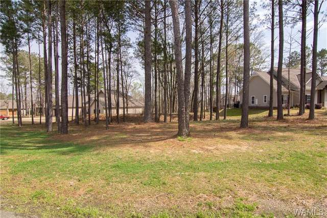 10644 Legacy Point Drive, NORTHPORT, AL 35475 (MLS #137427) :: The Alice Maxwell Team