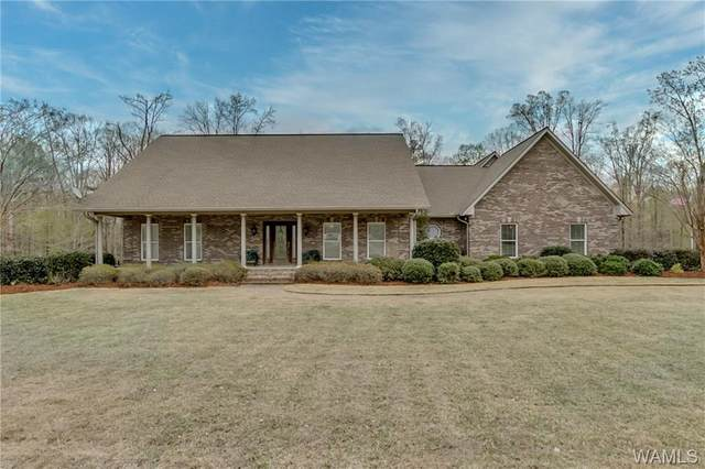 16623 Ben Clements Road, NORTHPORT, AL 35475 (MLS #137493) :: The Advantage Realty Group