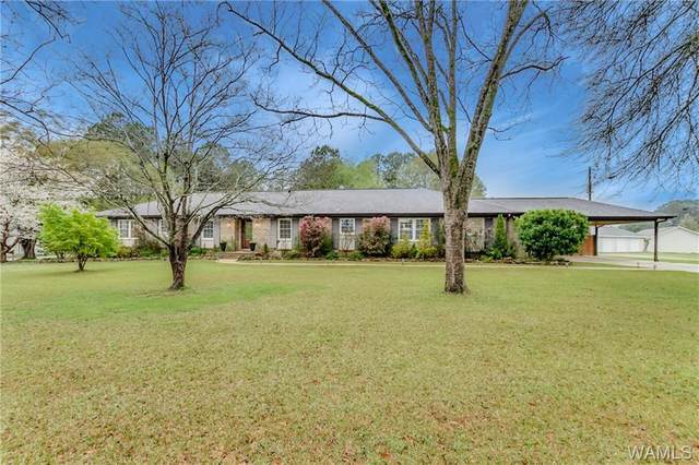 12280 Viewpoint Road, NORTHPORT, AL 35475 (MLS #137545) :: The Alice Maxwell Team