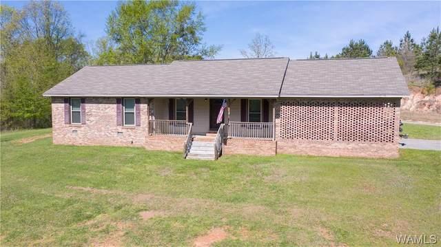 19368 Mormon Road, NORTHPORT, AL 35475 (MLS #137593) :: The Gray Group at Keller Williams Realty Tuscaloosa