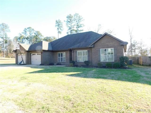 309 Turtle Bay Circle, NORTHPORT, AL 35473 (MLS #137656) :: The Gray Group at Keller Williams Realty Tuscaloosa