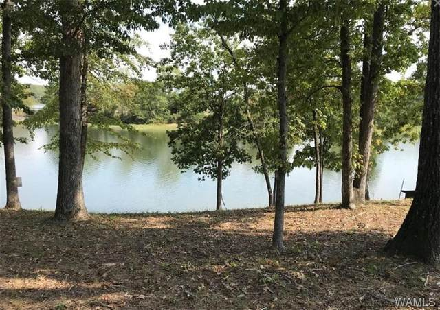 0 Kathryn Lane Drive #6, NORTHPORT, AL 35475 (MLS #137889) :: The Advantage Realty Group