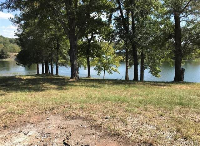 0 Searcy Road #8, NORTHPORT, AL 35475 (MLS #137890) :: The Alice Maxwell Team