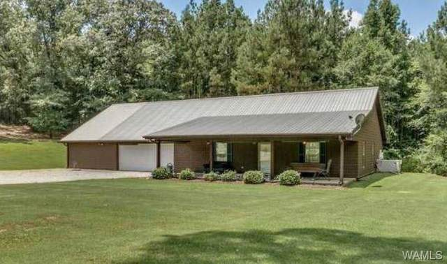 5669 County Road 16, GORDO, AL 35466 (MLS #137930) :: The Gray Group at Keller Williams Realty Tuscaloosa