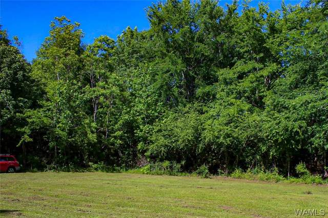 NA Lem Wilson Drive, DEMOPOLIS, AL 36748 (MLS #137985) :: The Alice Maxwell Team