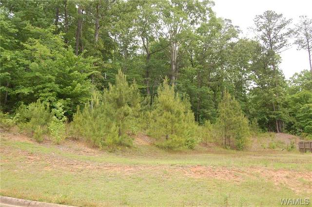 13711 Tab Drive, NORTHPORT, AL 35475 (MLS #138150) :: The Advantage Realty Group