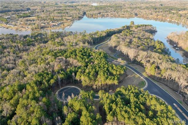75 Highpoint Cove, TUSCALOOSA, AL 35475 (MLS #138213) :: The Advantage Realty Group