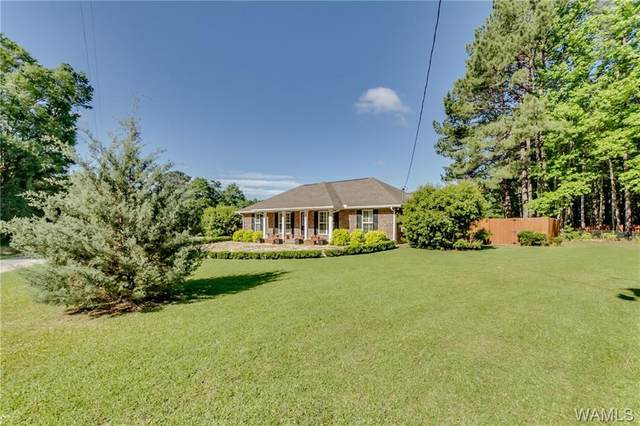 12878 Lesueur Road, NORTHPORT, AL 35475 (MLS #138385) :: The Alice Maxwell Team