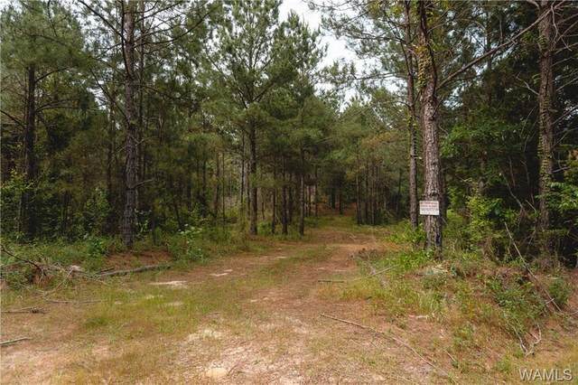 7788 Highway 159, FAYETTE, AL 35555 (MLS #138390) :: The Advantage Realty Group