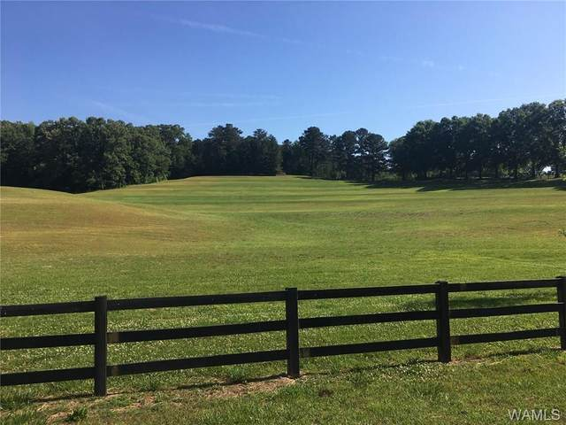 00 House Bend Road, NORTHPORT, AL 35475 (MLS #138394) :: The K|W Group