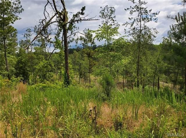 00 Port Mayfield Road, TUSCALOOSA, AL 35406 (MLS #138424) :: The Gray Group at Keller Williams Realty Tuscaloosa