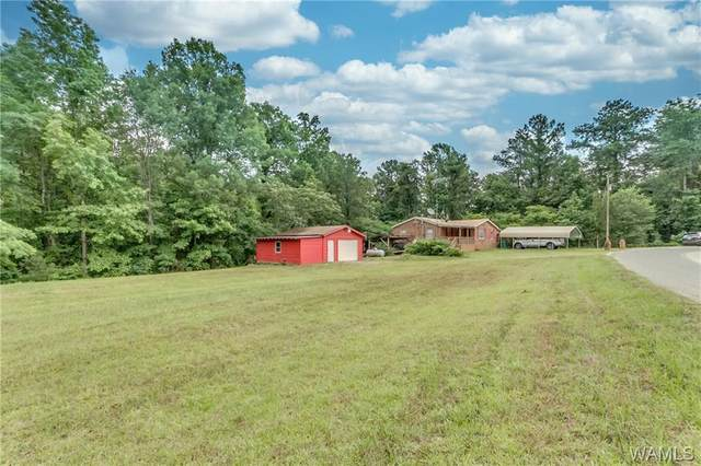 10992 Ben Clements Road, NORTHPORT, AL 35475 (MLS #138455) :: The Advantage Realty Group