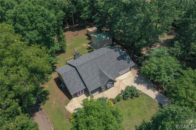 14223 Countryside Drive, NORTHPORT, AL 35475 (MLS #138459) :: The Alice Maxwell Team