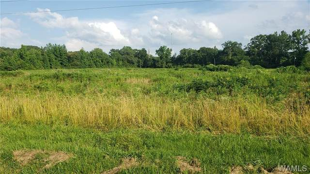 0 Us Highway 278, SULLIGENT, AL 35586 (MLS #138743) :: The K|W Group