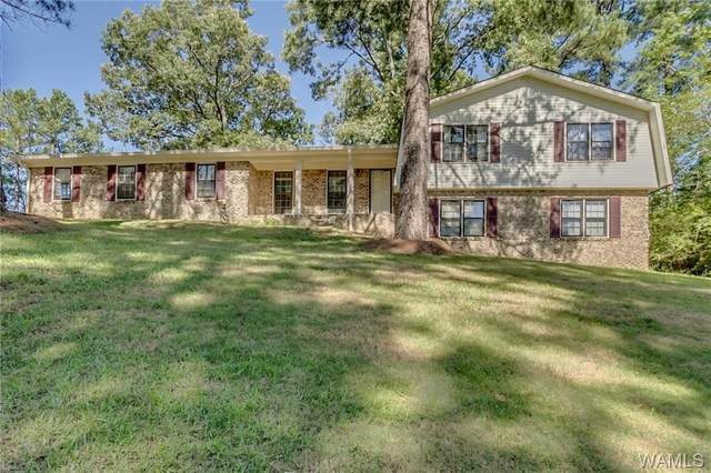 4300 Orion Avenue, NORTHPORT, AL 35473 (MLS #138772) :: The Gray Group at Keller Williams Realty Tuscaloosa