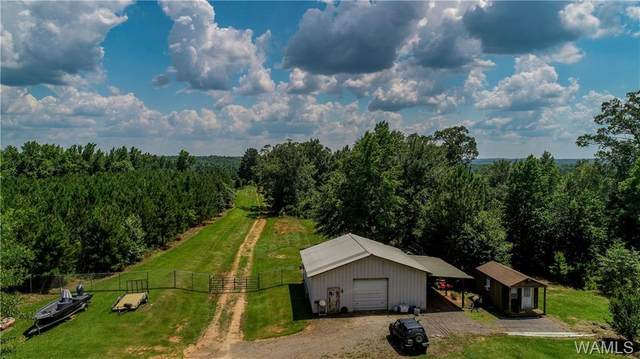 0 Cotton Creek Spur, NORTHPORT, AL 35475 (MLS #138783) :: The Advantage Realty Group