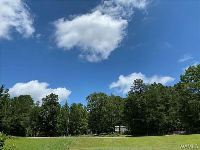 9200 Wire Road, COTTONDALE, AL 35453 (MLS #138955) :: The Gray Group at Keller Williams Realty Tuscaloosa