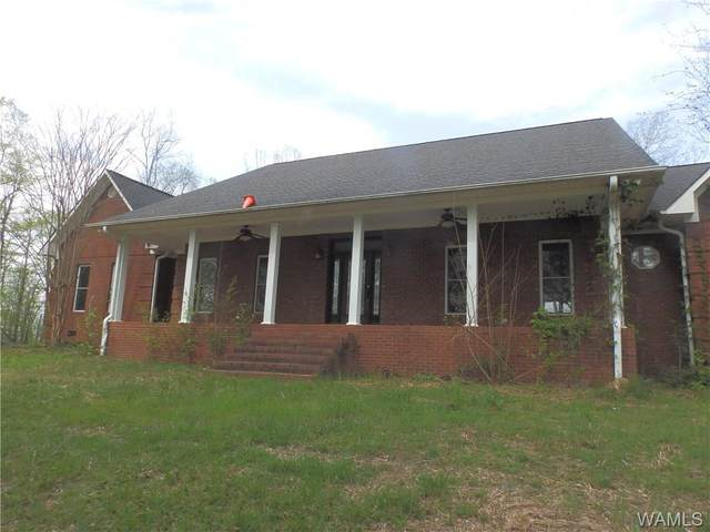 384 County Road 138, FAYETTE, AL 35555 (MLS #139061) :: The Gray Group at Keller Williams Realty Tuscaloosa