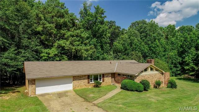15731 Old Fayette Road, NORTHPORT, AL 35475 (MLS #139312) :: The Gray Group at Keller Williams Realty Tuscaloosa