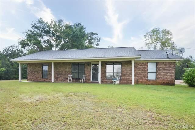 18263 Morman Road, NORTHPORT, AL 35475 (MLS #139460) :: The Gray Group at Keller Williams Realty Tuscaloosa