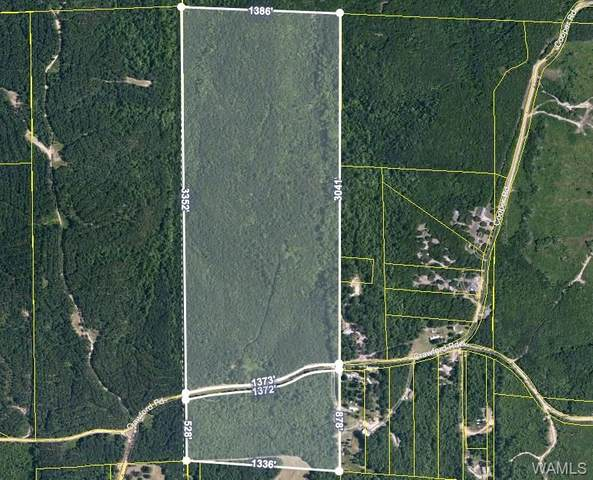 18937 Crawford Road, GORDO, AL 35466 (MLS #139474) :: The Gray Group at Keller Williams Realty Tuscaloosa