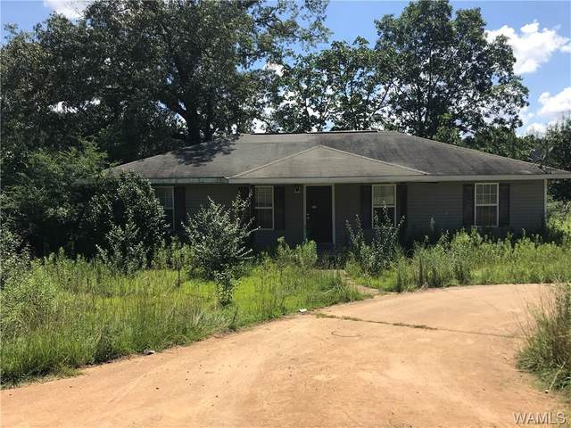 11371 Hen Smith Road, VANCE, AL 35490 (MLS #139630) :: The Advantage Realty Group