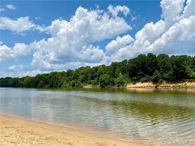 13820 Riverbend Road, MOUNDVILLE, AL 35474 (MLS #139639) :: The Gray Group at Keller Williams Realty Tuscaloosa