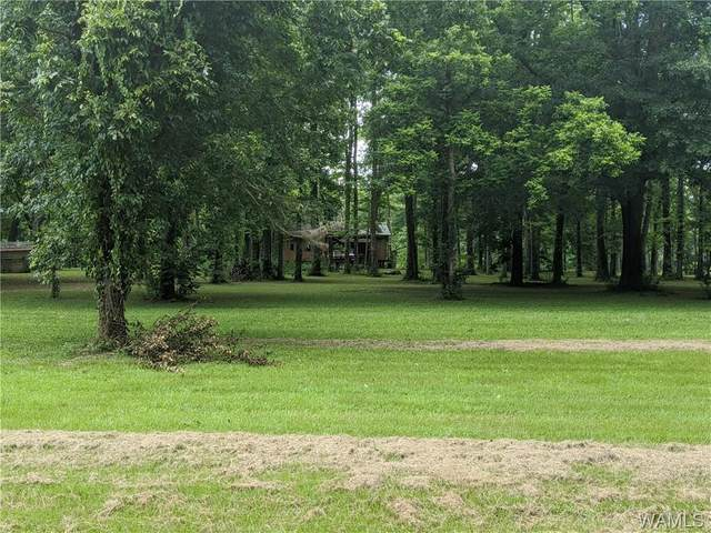 687 Riverview Beach Road, MOUNDVILLE, AL 35474 (MLS #139681) :: Caitlin Tubbs with Hamner Real Estate