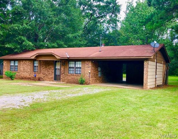 166 Brentwood Lane, MOUNDVILLE, AL 35474 (MLS #139773) :: The Gray Group at Keller Williams Realty Tuscaloosa