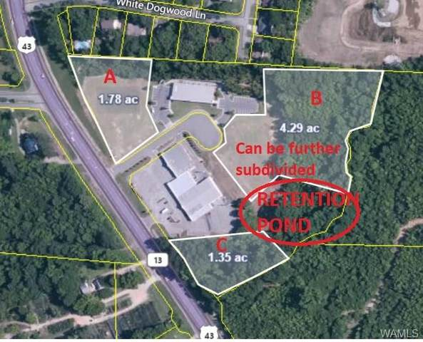 4419 Highway 43 B, NORTHPORT, AL 35473 (MLS #139820) :: The Advantage Realty Group