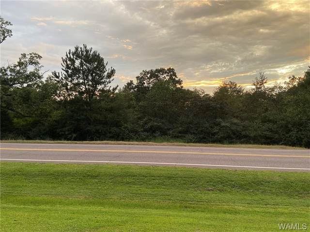 0 Hwy 43 N, NORTHPORT, AL 35475 (MLS #140167) :: The Advantage Realty Group