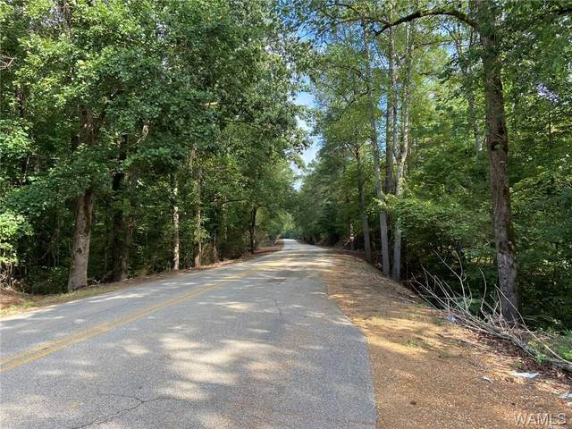 23730 Gorgas Road, BERRY, AL 35546 (MLS #140168) :: The Advantage Realty Group