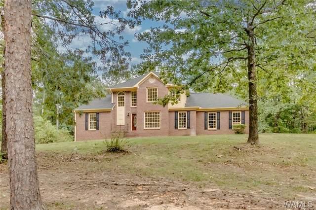 250 Martin Road, NORTHPORT, AL 35473 (MLS #140393) :: Caitlin Tubbs with Hamner Real Estate