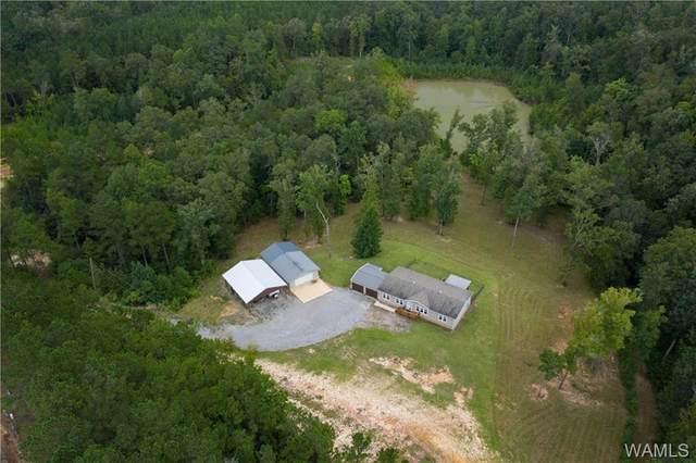 8498 Horseshoe Creek Road, COTTONDALE, AL 35453 (MLS #140403) :: The Gray Group at Keller Williams Realty Tuscaloosa