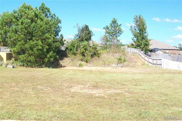 12535 Willow View Circle, NORTHPORT, AL 35475 (MLS #140909) :: The Advantage Realty Group