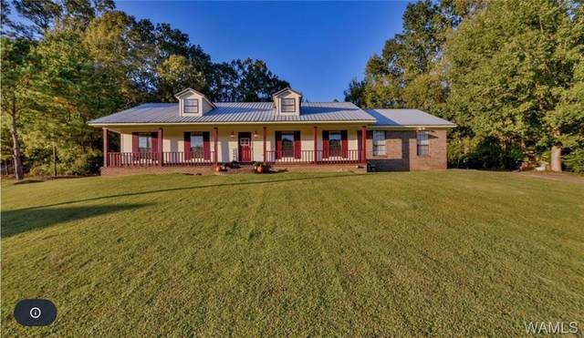 7110 Harperwood Street, NORTHPORT, AL 35473 (MLS #140919) :: The K|W Group