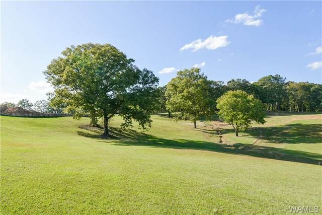 Lot 27 Highland Lakes Pointe, NORTHPORT, AL 35475 (MLS #140924) :: Caitlin Tubbs with Hamner Real Estate