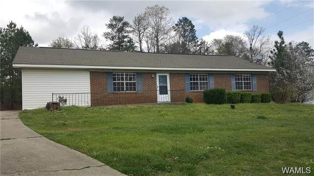 14576 Highway 11 N, COALING, AL 35453 (MLS #141082) :: Caitlin Tubbs with Hamner Real Estate