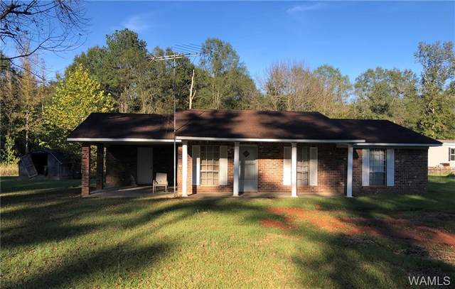 189 Hinton Place Drive, ALICEVILLE, AL 35442 (MLS #141108) :: The Gray Group at Keller Williams Realty Tuscaloosa