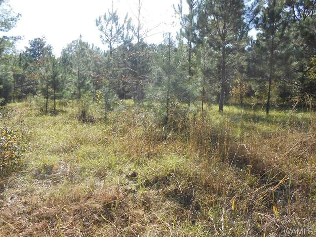 000 Wallace Rd., Cuba, AL 36907 (MLS #141176) :: The Advantage Realty Group