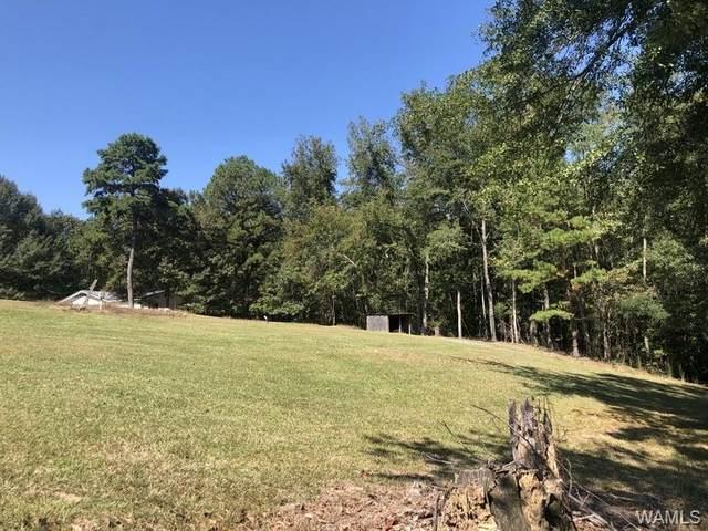 15923 Highway 140, BUHL, AL 35446 (MLS #141267) :: The Gray Group at Keller Williams Realty Tuscaloosa